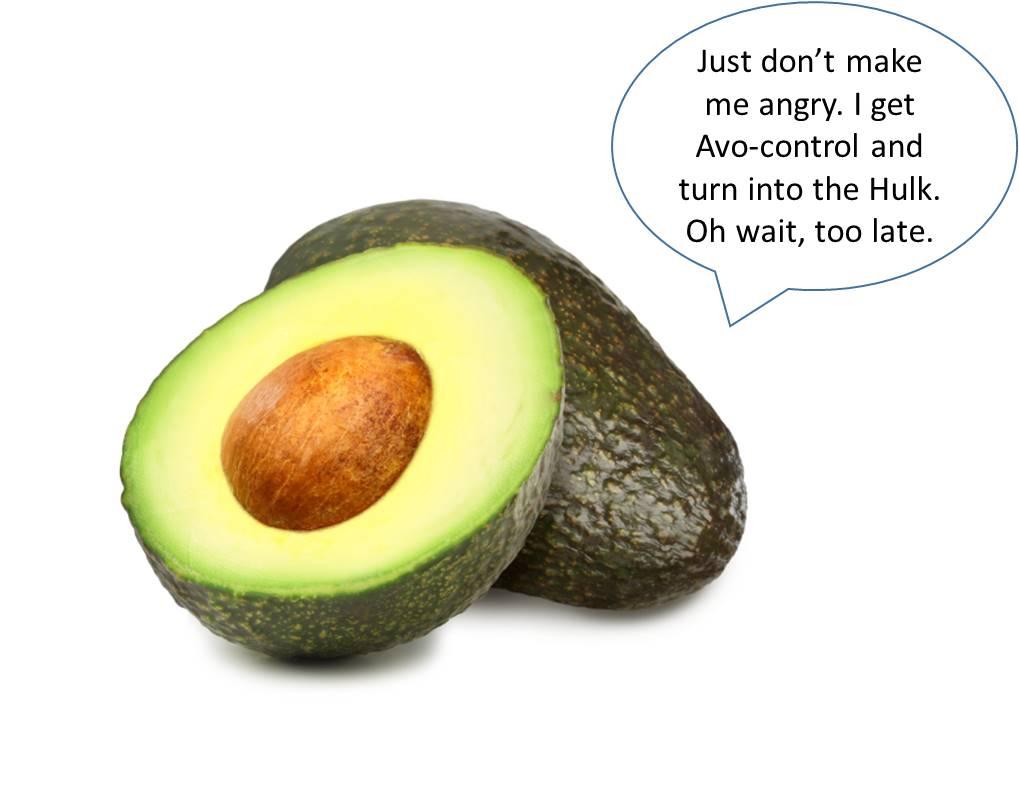 Avocado Image