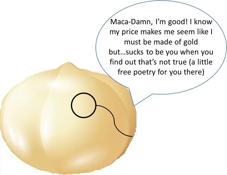 Macadamia Nut Image